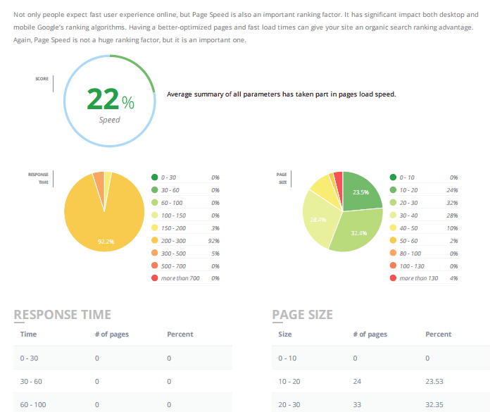 Detailed SEO Reporting