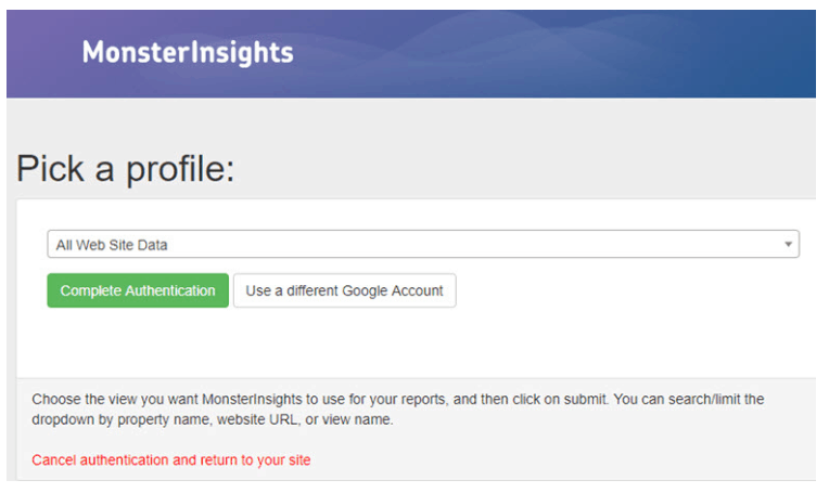 Finish Authenticating Google with MonsterInsights
